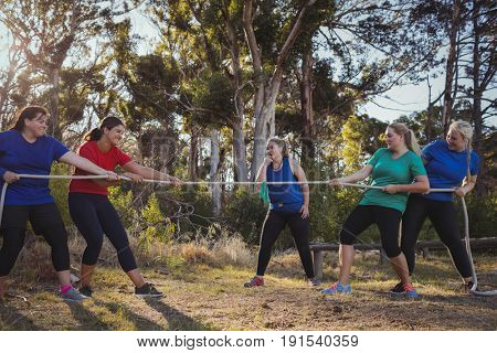 Group of women playing tug of war during obstacle course training in the boot camp