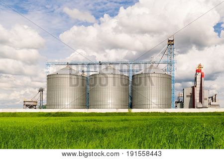 Agricultural Silo, foreground sunflower plantations - Building Exterior, Storage and drying of grains, wheat, corn, soy, sunflower against the blue sky with white clouds.