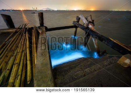 Algae Bloom Showing Luniminescence Blue Color