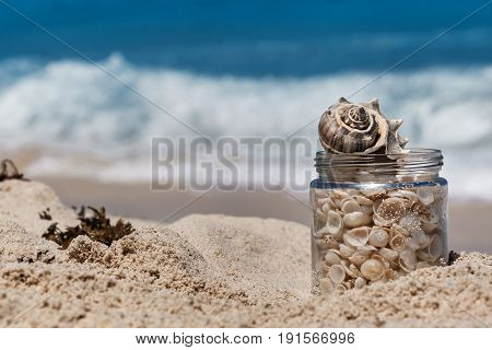 Shells in a glass jar on the sand beach in Cancun tropical landscape