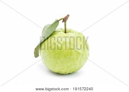 Guava isolated on white background. Green guava