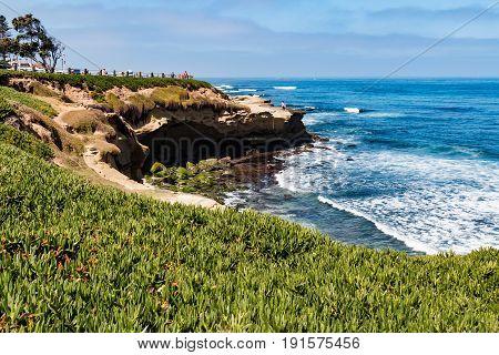 LA JOLLA, CALIFORNIA - JUNE 16, 2017:  Ice plants cover a cliffside at La Jolla Cove, in San Diego, California.