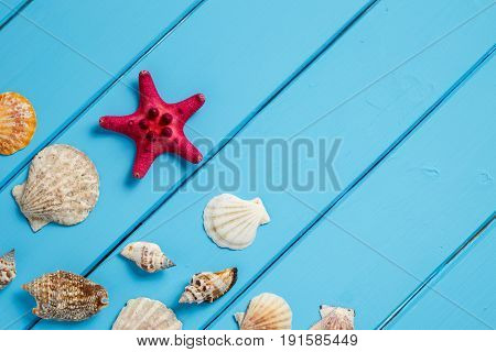 Sea star and shells on wooden blue background.Different marine items on blue painted wooden background. Sea objects on wooden planks. Selective focus. Place for text.