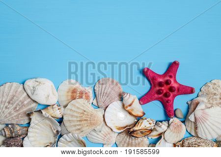 shells on the old blue wooden boards. marine still life. time to rest, concept of vacation, relaxation
