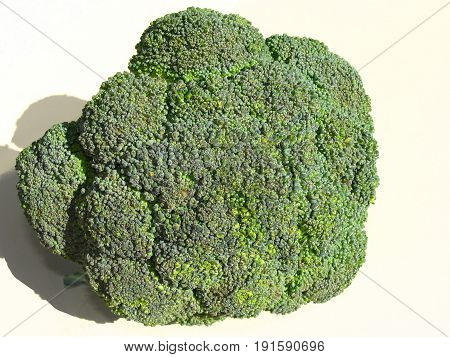 Broccoli, is an edible green plant in the cabbage family whose large flowering head is eaten as a vegetable