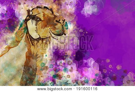 Colorful Splashes Watercolor Style Dromedary Camel Illustration