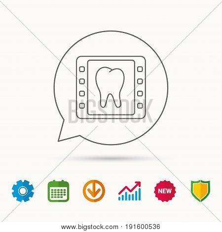 Dental x-ray icon. Orthodontic roentgen sign. Calendar, Graph chart and Cogwheel signs. Download and Shield web icons. Vector