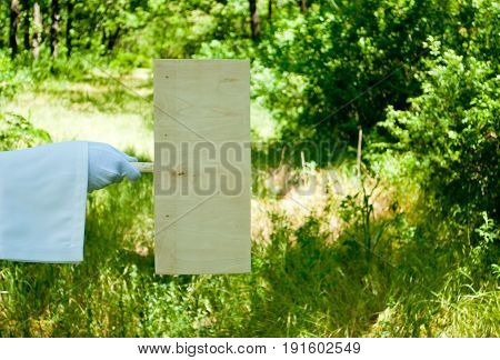 The waiter's hand in a white glove and with a white napkin holds a wooden rectangular tablet or placard on the background of green bushes and grass
