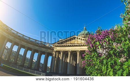 Kazan Cathedral In Saint Petersburg Summer Lilac.