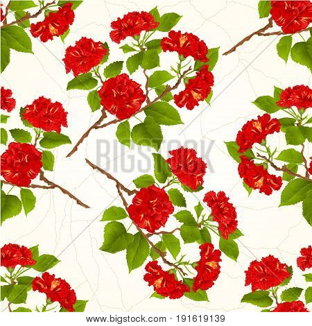 Seamless texture branch red hibiscus tropical flowers on a white background vintage vector botanical illustration hand draw