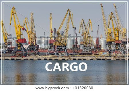 Cargo. Container cranes in cargo port terminal.