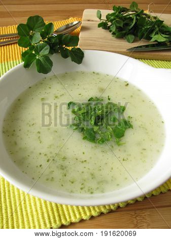 Homemade herbs cream soup with fresh watercress