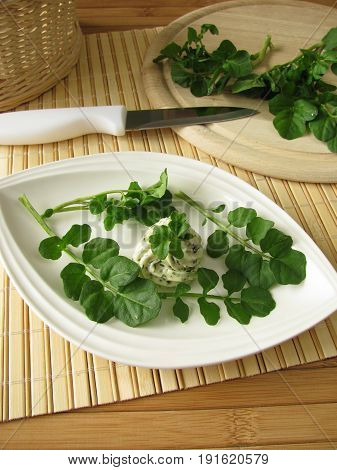 Homemade herbs butter with watercress on plate