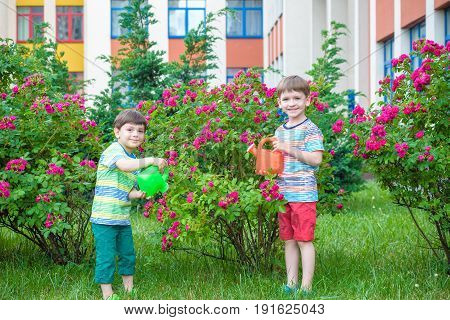 Two Little Kid Boys Watering Roses With Can In Garden. Family, Garden, Gardening, Lifestyle