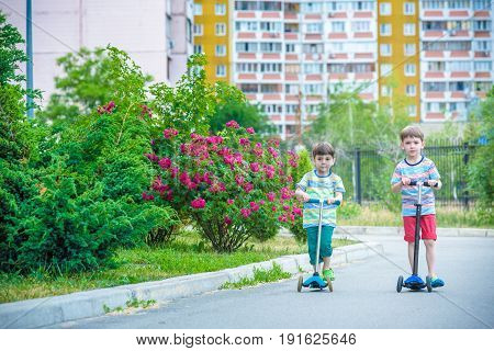 Two little boys riding on scooter in summer park. Smiling and looking to each other. Wear on t-shirts and pants. Nice sunny evening.