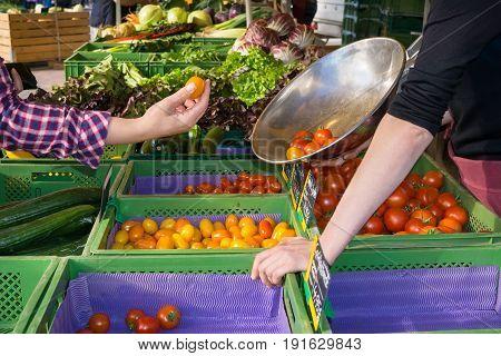 Woman Shopping For Fresh Veggies At A Farm Market.