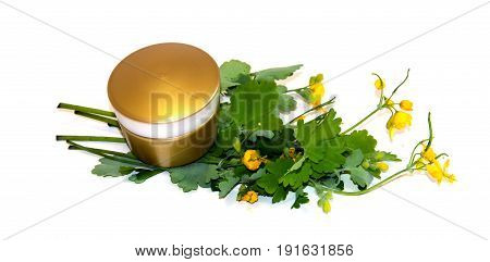 Natural Cream And Sprig White Celandine  Cosmetic Set