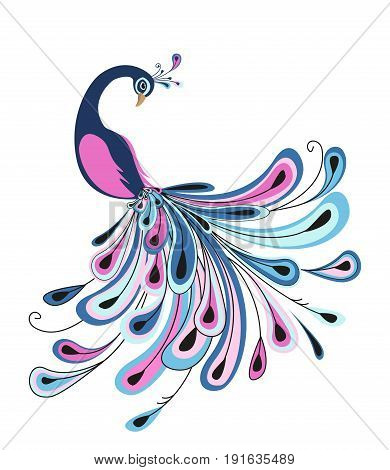 Vector illustration of peacock. Background with bird and color feathers