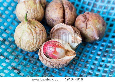 Close-up Of Fresh Nutmeg Fruit With Mace Seed