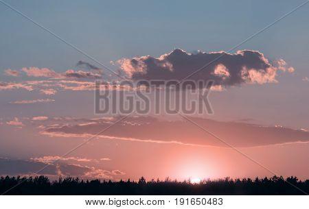 Beautiful landscape, sunny dawn in a field