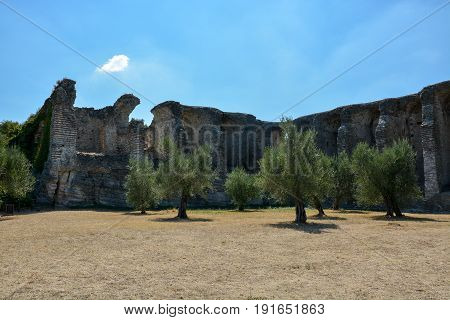 Trees In Front Of The Grotto Di Catullo Near Sirmione At Lake Garda