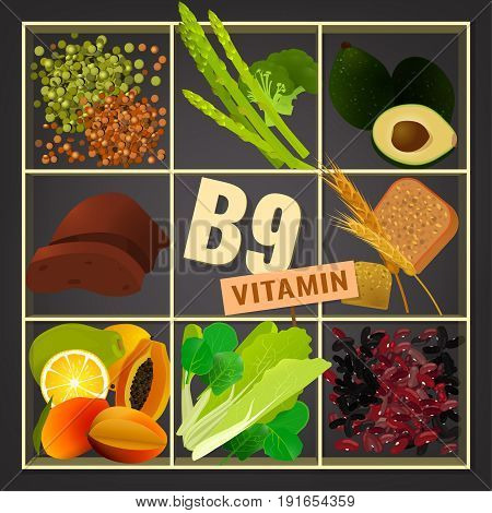 Set of healthy fruit, vegetables, beans, lentils and greens containing vitamin B9. Food sources graphic information. Source of folicin - seeds, vegetables, beans, lentils. Vector illustration.