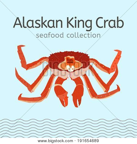 Alaskan king crab on a light background. Seafood collection. Vector illustration.