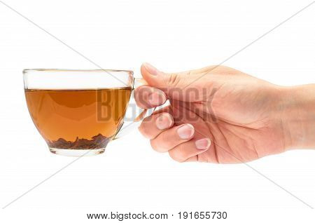 Female Hand Holds A Cup Of Tea. Isolated On White Background