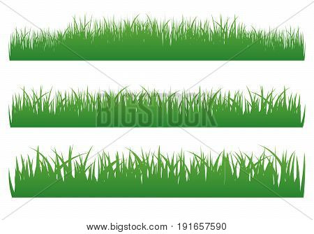 Vector illustration of green grass set on white background.