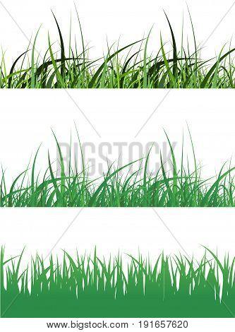 Vector illustration of green grass set on white background.