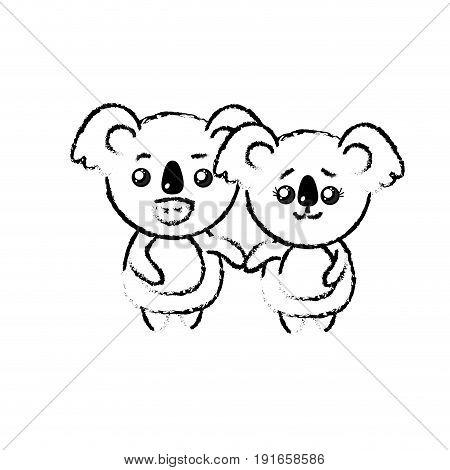 figure cute couple koala wild animal with beautiful expression vector illustration