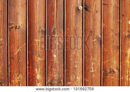 A fragment of a scratched unfinished wooden fence