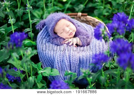 Beginning of life and happy fairy magic childhood concept. 17 day old Smiling newborn baby is sleeping on his stomach in the basket on nature in the garden outdoor.