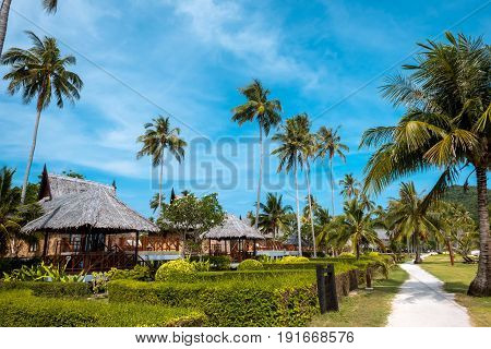 Bungalows hut and palms Koh Phi phi island Thailand