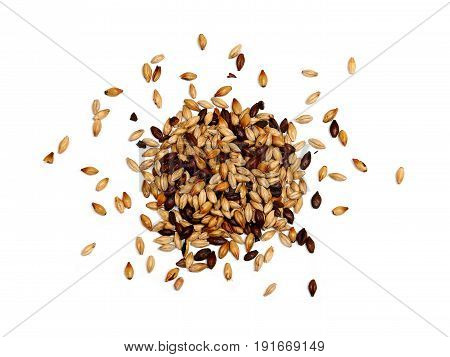 Mixed Malted Barley on White Background, Grain