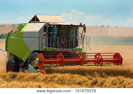 Grain harvesting. Combine harvester harvest ripe wheat on a farm