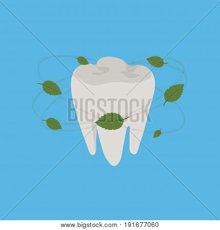 healthy teeth fresh breath mint leaves aroma of toothpaste flat design image