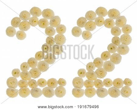 Arabic Numeral 22, Twenty Two, From Cream Flowers Of Chrysanthemum, Isolated On White Background