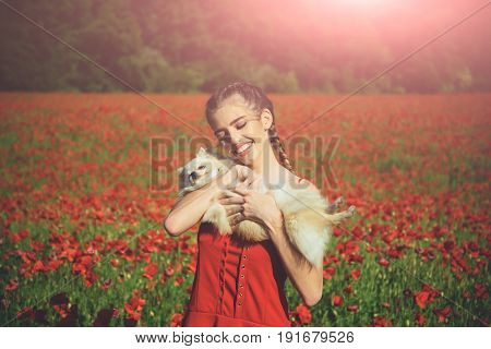 girl embrace pomeranian spitz or cute dog pet in hands with smiling face in red dress in flower field of poppy seed with green stem on natural background summer drug and love intoxication opium