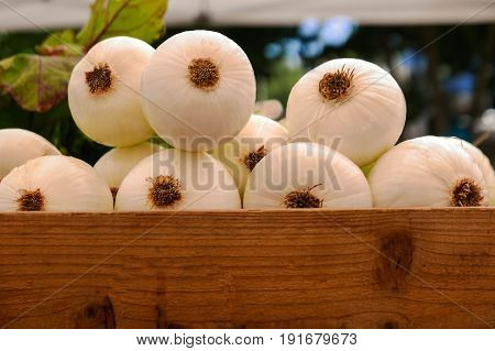 White onions in wooden crate at farmers market