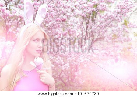 girl or cute woman with rosy bunny ears on long blond hair holding magnolia flower in blossoming garden on sunny day on floral environment. Spring. Easter holidays celebration
