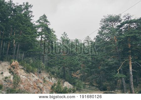Mountain landscape. Beautiful cloudy moutainscape. Mountain scene. Serene scenery in wild nature. Misty mountain landscape. Mist in the forest. Misty mountains view in the early morning.