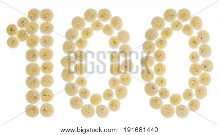 Arabic Numeral 100, One Hundred, From Cream Flowers Of Chrysanthemum, Isolated On White Background