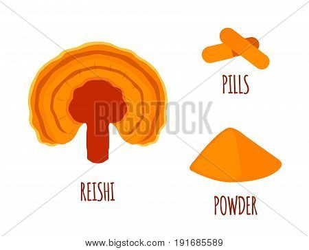 Reishi mushroom, Ganoderma lucidum made in flat style. Healthy organic superfood, powder, pills.