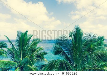 Retro effect faded colors in tropical scene palm trees and fronds swaying in breeze over ocean distant horizon and below sky.