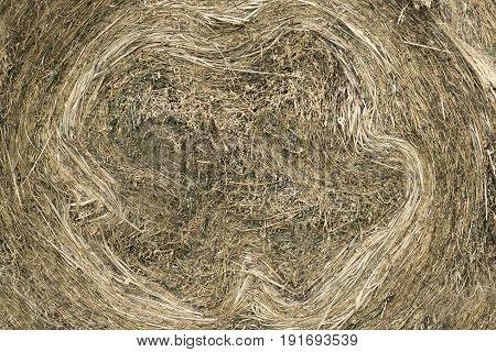Closeup of golden hay roll circular haystack showing straw texture. Horizontal