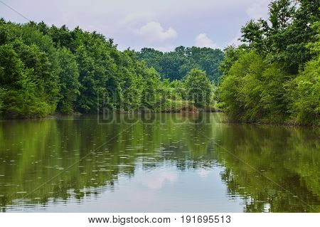 Landscape Of A Lake With Forest