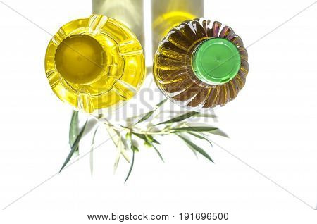 Olive versus sunflower oil bottled in PET. Upper view with young olives branch