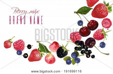 Vector fruit banner with mix of falling berries on white background. Design for natural cosmetics, dessert menu, sweets and pastries filled with berries, health care products. With place for text