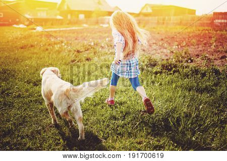 Little girl with a child with a labrador puppy in the street in summer in the rays of the setting sun running on the grass. Concept childhood in the village holiday.